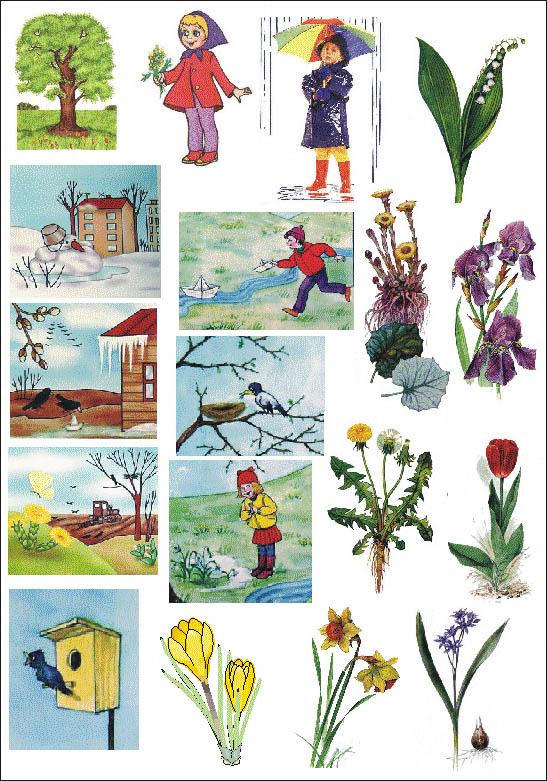 Группы разделены картинки весна