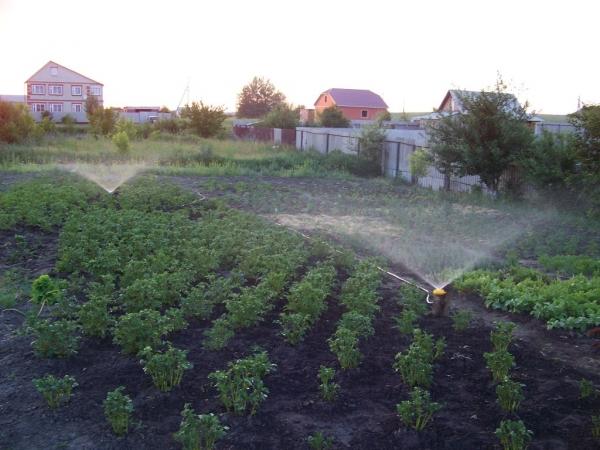 Поливалки своими руками для огорода